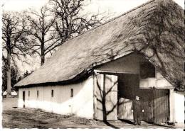 OOLEN (2250) : Grote Kempische Schuur Met Langs Gerichte Dorsvloer En Schaapskooi, Olen 1789. Openlucht Museum Bokrijk - Olen