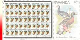 Rwanda 0901**  20c  Ann�e de l'�levage - Feuille  / Sheet de 50 MNH