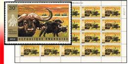 Rwanda 0452**  30c Akagera II Buffles - Feuille / Sheet de 20  MNH