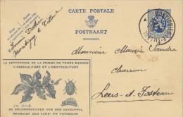 """BELGIE/BELGIQUE – ILL. 18° : """"Bestrijding Van De KOLORADOKEVER – Lutte Contre Le DORYPHORE"""" :  AARDAPPEL,POMME De TERRE, - Stamped Stationery"""