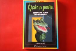 Livre Chair De Poule (comment Tuer Un Monstre) - Livres, BD, Revues