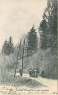 Annecy Dingy  74 Haute Savoie Dent De Lanfon Pittier - Dingy-Saint-Clair