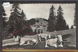 HOTEL TÊTE DE RAN - VACHES - TB - NE Neuchâtel
