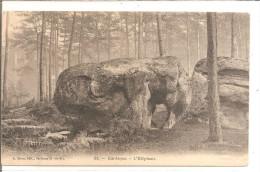 BARBIZON  L'éléphant - Dolmen & Menhirs