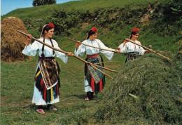Bosnia And Herzegovina,Derventa,Folk Costumes - Bosnia Erzegovina