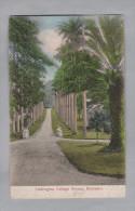 AK BARBADOS 1932-04-21 Barbados  College Avenue #6859 - Barbades