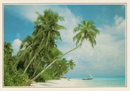 MALDIVE  FARUKOLUFUSHI:  PALME DI COCCO E SABBIA BIANCA      (NUOVA CON DESCRIZIONE DEL SITO) - Maldive