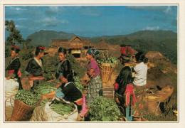 LAOS:  LUANG  PRABANG:   IL  MERCATO     (NUOVA CON DESCRIZIONE DEL SITO) - Laos