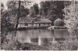 19,corrèze,st Salvadour ,étang De Fleyssac,petit Coin De Paradis,l´amour De La Nature