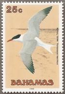 Bahamas,  Scott 2015 # 713,  Issued 1991,  Single,  MNH,  Cat $ 1.40.  Bird