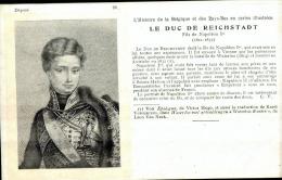 100 CARTES POSTALES , Dynasty , Roi Et Reine , L´histoire De La Belgique Et Des Pays-Bas En Cartes Illustrées N°1 à 100 - Historical Famous People