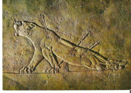 The Dying Lioness Detail From Ashurbanipal's Lion-hunt Series Of Stone Bas-reliefs. Assyrian Art. British Museum - Articles Of Virtu