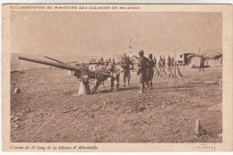 Documentation Du Ministere Des Colonies De Belgique, Canons De 76 Long De La Défense D'Albertville, Congo (pk16330) - Belgisch-Kongo - Sonstige