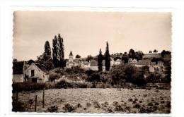 VAUX Sur VIENNE  ( 86 ), Vue Générale - Autres Communes