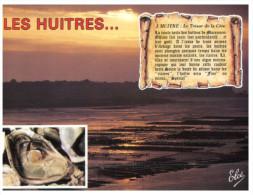 (4444 DEL) France - Oysters - Courseulles - Courseulles-sur-Mer