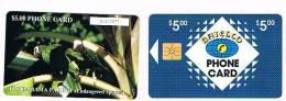 BAHAMAS   - BATELCO CHIP  -  1993 UCCELLI: PARROT CODICE BIANCO  (WHITE CODE)    -  USATA° (USED)   -  RIF. 999 - Pappagalli