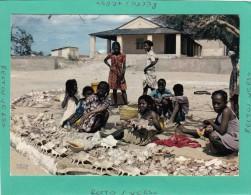 MADAGASCAR TULEAR MARCHE DE COQUILLAGES - Liberia