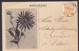 Denmark CARL V. LANGE, FREDERIKSSUND 1919 Card Karte SØSUM Pr. Viksø 7 Øre Christian X. (2 Scans) - Covers & Documents