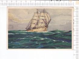 VOILIER  -  Illustration  - - Voiliers