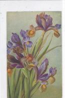 CARD IRIS BOUQUET  EDIZIONI RIZZOLI MILANO N°7--FP-N-2-  0882- 23263 - Fleurs, Plantes & Arbres