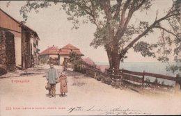 St Gingolph (185) - VS Valais