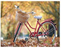 (707) Cycle - Velo - Bicyclette (Belarus) - Cartoline