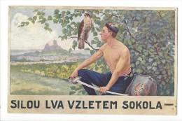 12105 - Sokolsky Pozdrav SILOU LVA VZLETEM SOKOLA - Tchéquie