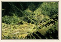 BANGAAN   RISAIE  E TERRAZZE       (NUOVA CON DESCRIZIONE DEL SITO SUL RETRO) - Filippine