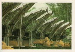 INDONESIA: CELEBES: DEPOSITO DI RISO A NANGGALA     (NUOVA CON DESCRIZIONE DEL SITO SUL RETRO) - Indonesia