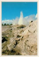 SMOCKING ISLAND:  GEYSER NEL PARCO ROTORUA       (NUOVA CON DESCRIZIONE DEL SITO SUL RETRO) - Nuova Zelanda