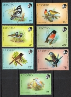 Lesotho 1988 - Uccelli Birds MNH ** - Lesotho (1966-...)