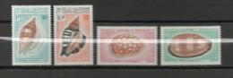 NOUVELLE CALEDONIE  N° 368à371  NEUF SANS CHARNIERE COTE 30.50€   COQUILLAGE - Neufs