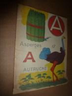 1925 ?  Album Pour Apprendre Les Lettres...à Colorier - Bücher, Zeitschriften, Comics