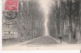 NOGENT SUR SEINE LE CANAL TERRAY 1907 - Nogent-sur-Seine