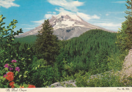 Ph-CPSM EtatsUnis Mt. Hood (OR Oregon) Oregon's Sentinel Peak - Non Classés
