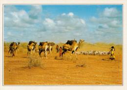 SOMALIA:   GIOVANI DONNE  SOMALE            (NUOVA CON DESCRIZIONE DEL SITO SUL RETRO) - Somalia