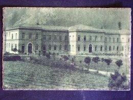 CAMPANIA -AVELLINO -CERVINARA -F.P. LOTTO N° 450 - Avellino