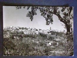 CAMPANIA -AVELLINO -ARIANO IRPINO -F.G. LOTTO N° 450 - Avellino