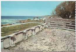 38447 - LEBANON THE RUINS OF BYBLOS ROMAN AMPHITHEATRE   POSTCARD UNUSED