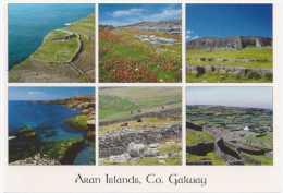 38579 - IRELAND  GALWAY  ARAN ISLANDS   POSTCARD USED - Galway