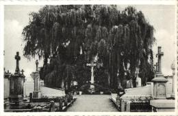 BELGIQUE - FLANDRE OCCIDENTALE - DEERLIJK - Calvarie Op Het Kerkhof. (calvaire). - Deerlijk
