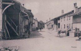 Founex, Vache à La Fontaine (2625) - VD Vaud