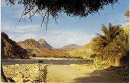 Asie - Oman - Wadi Hajar - Oman