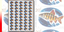 Rwanda 0544**  20c  Poissons -  Feuille / Sheet de 50 MNH