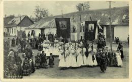 HUNGARY - WALIFAHRT IN MEZOKOVESD - TEMPLOMI KORMENET MEZOKOVESDEN - Hongrie