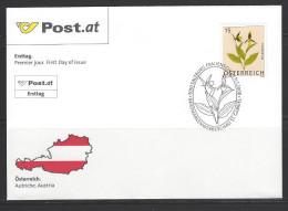 ÖSTERREICH - FDC Mi-Nr. 2696 - Blumen Frauenschuh (Cypripedium Sp.) (Pressblumenbild) - FDC