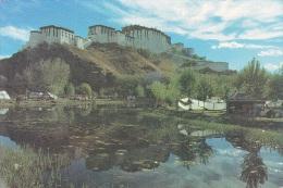 TIBET TH POTALA PALACE - Tibet