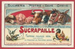 Oreye - Sucrerie Notre-Dame - Sucrapaille - Oblitération Allemande - 1916 ( Voir Verso, Spécial ) - Oreye