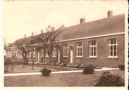 RIJKEVORSEL (2310) : School St-Jozef , Zusters Der Christelijke Scholen. CPSM Dentelée. - Rijkevorsel