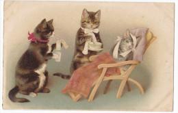CHATS Soignant Un Malade. Très Belle Carte. - Cats